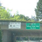 アメリカで初めての運転。日本とは違う交通ルールとは?